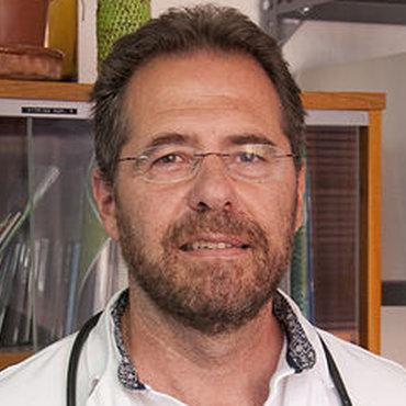 Miguel Torralba